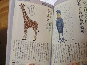 ざんねんな生き物図鑑